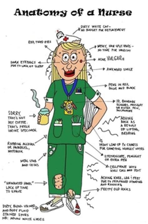 Emergency room nurse responsibilities resume